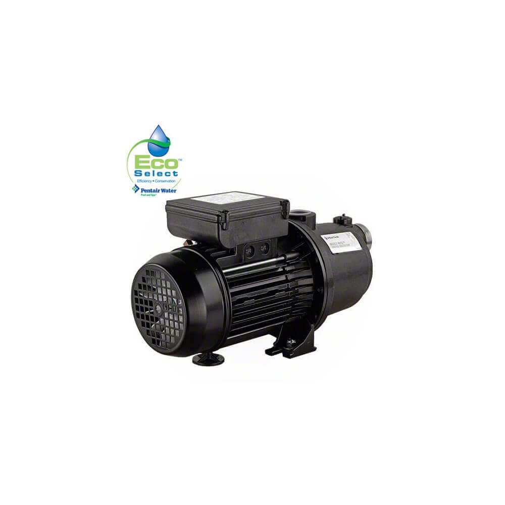 Surpresseur de piscine 1 5 cv 5 turbines sta rite mypiscine for Surpresseur pour piscine
