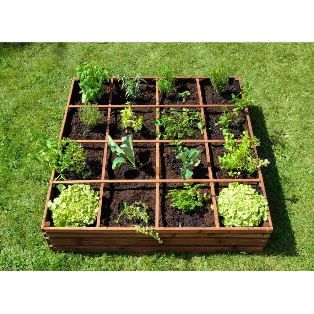 Carr potager 16 carr s lign z mypiscine for Amenagement jardin carre