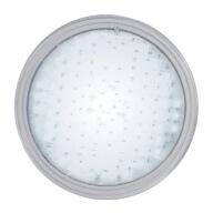 Ampoule 315 LED Blanche PAR56 20W